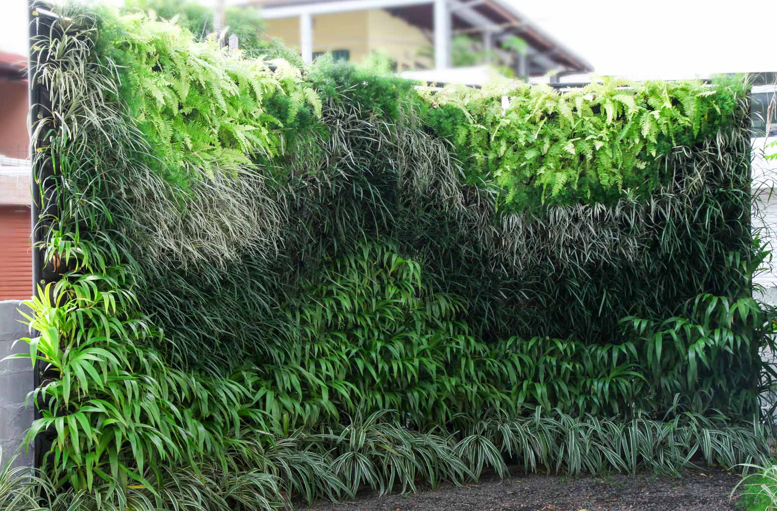 Skygrow Vertical Garden Solutions From Skytech Engineering